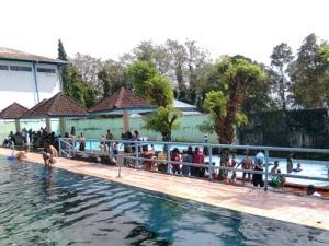 kolam 4